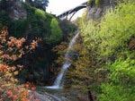 Botanical garden, Tbilisi